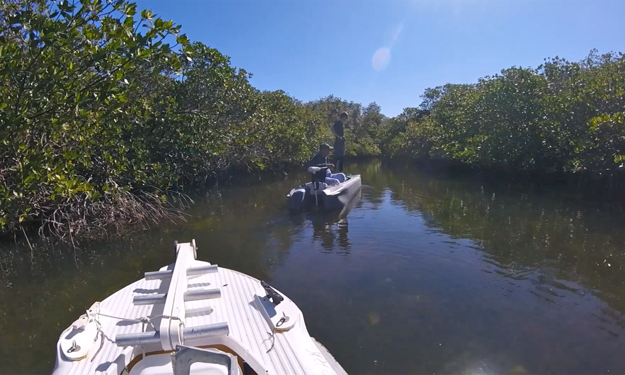 Wavewalk S4 microskiffs in mangrove creek, Florida
