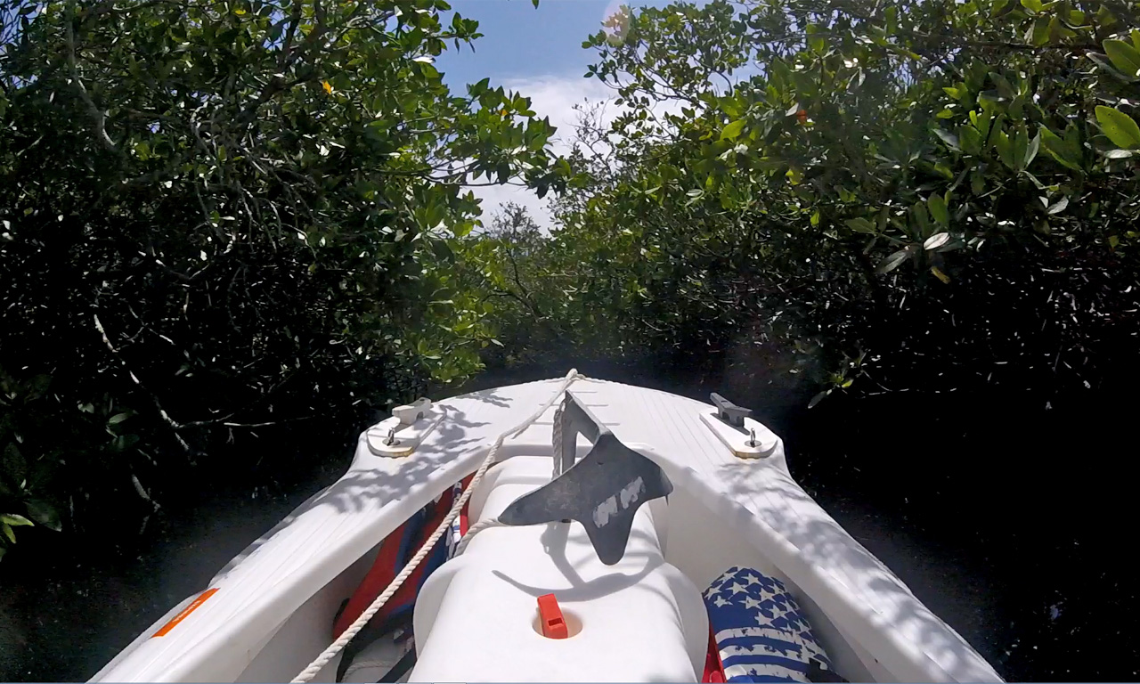 Wavewalk S4 microskiff in mangrove tunnel, Florida
