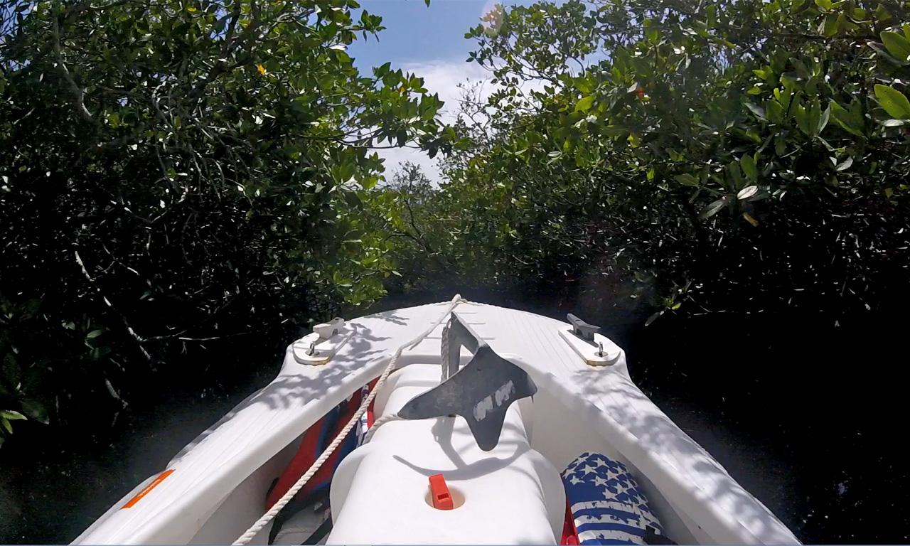Wavewalk S4 microskiff in mangrove tunnel, Florida