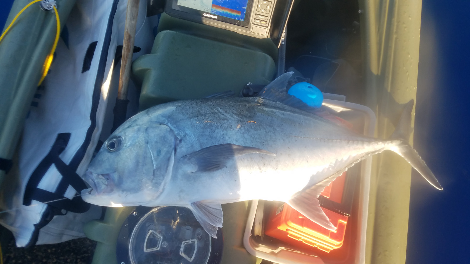 S4 offshore fishing trip - Hawaii